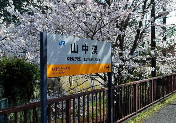 春爛漫_b0093754_093553.jpg
