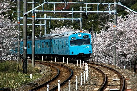 春爛漫_b0093754_095412.jpg