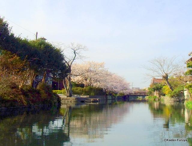柳川 川下り_a0092659_1827724.jpg