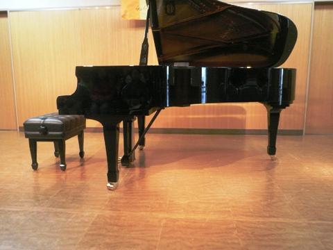 ピアニストの芸_c0167264_228167.jpg