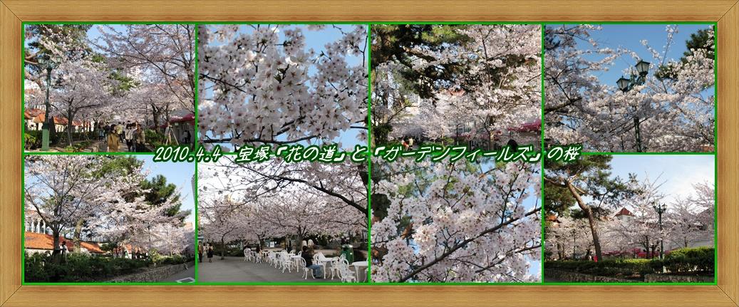 a0052666_1573014.jpg