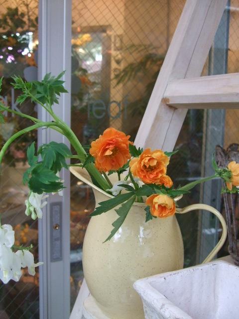 オークリーフ(赤いダイコン草と山吹とラナンキュラスの花束)_f0049672_16453813.jpg
