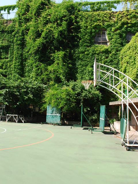東京都台東区立旧下谷小学校(昭和モダン建築探訪)_f0142606_19113228.jpg