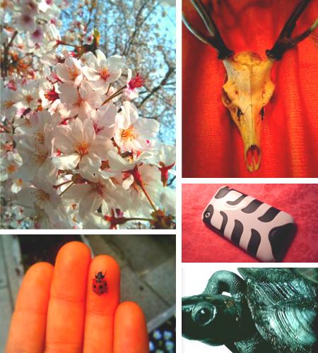 春ぽか。_e0177207_23294036.jpg