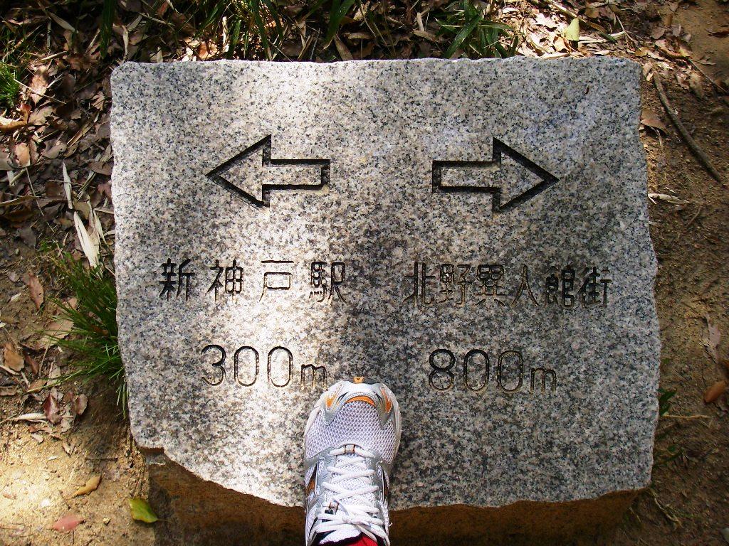10.04.06(火) 六甲ハイキング_a0062810_21152640.jpg