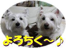 f0084422_1422209.jpg