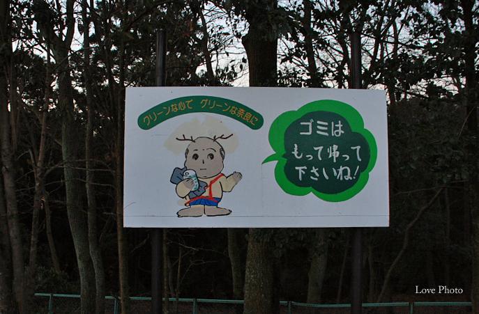 若草山の夜明け_a0116472_0581057.jpg
