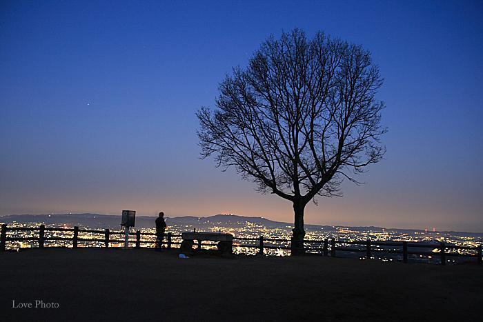 若草山の夜明け_a0116472_9171428.jpg