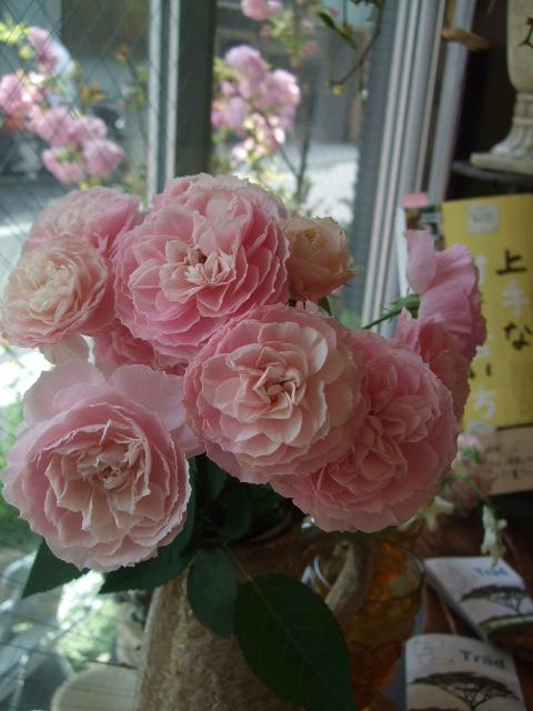 オークリーフ(そろそろ薔薇の季節に・・)_f0049672_120244.jpg