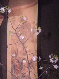 春のわかれと宴会と_c0125899_1339395.jpg