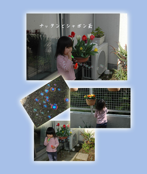 c0051105_1135318.jpg