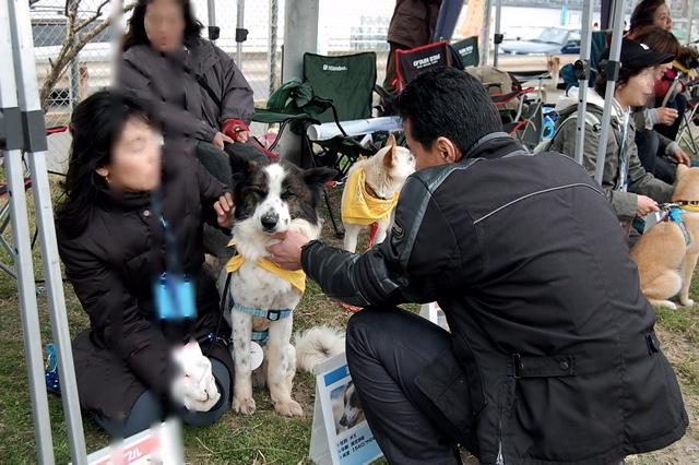 第77回 ちばわん いぬ親会 in 湘南(第9回)のご報告_e0014507_1581129.jpg
