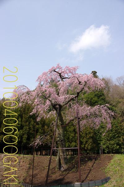 b0012811_0223752.jpg