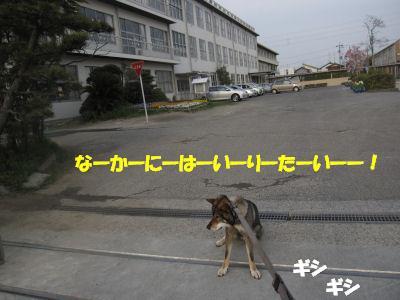 f0143123_20112549.jpg