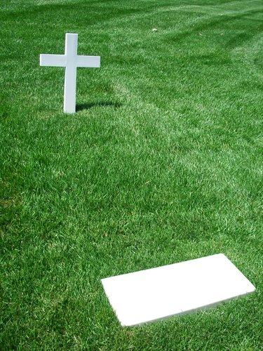 DCでお花見 part3 アーリントン墓地_c0064534_2204315.jpg