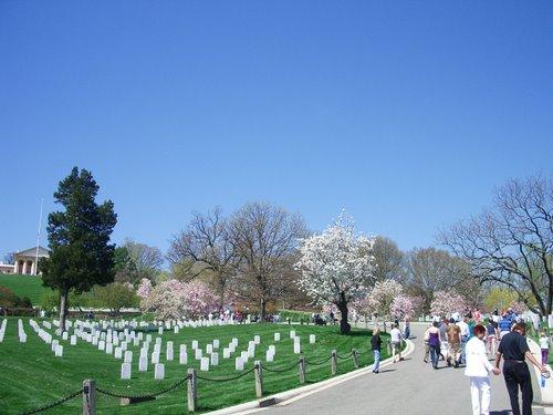 DCでお花見 part3 アーリントン墓地_c0064534_261534.jpg