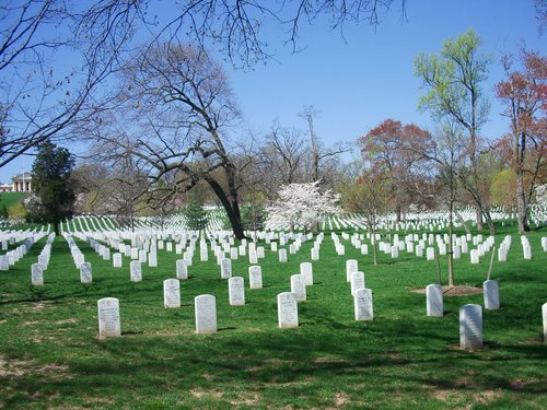 DCでお花見 part3 アーリントン墓地_c0064534_265088.jpg