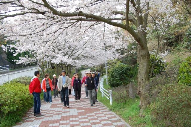 『2010年4月度「大人の林間・臨海学校」第2日』 _c0108460_0202128.jpg
