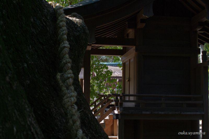 淡路島・伊弉諾神宮_a0157263_23435034.jpg