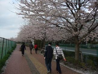 キャンパスを歩く_b0183063_15322474.jpg