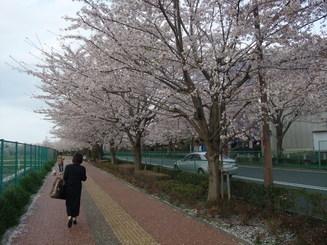 キャンパスを歩く_b0183063_1532514.jpg