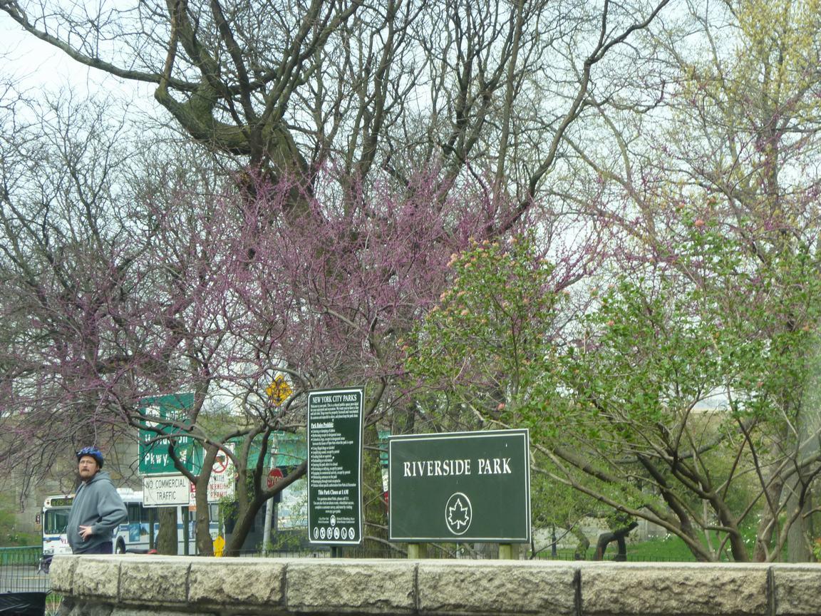 春が来ています、マンハッタンに・・・・、_d0100880_84557100.jpg
