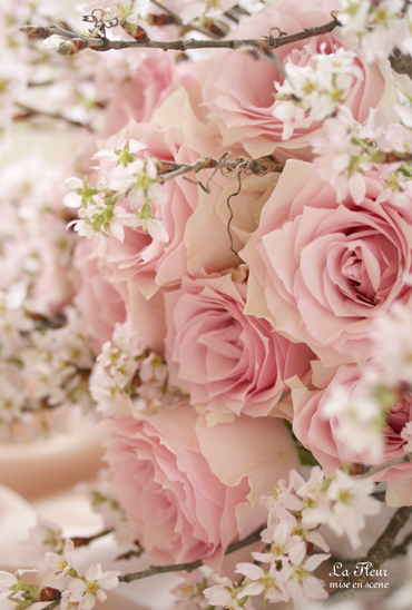 さくらの花束_f0127281_15374413.jpg