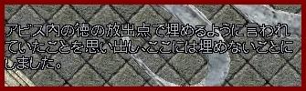 b0096491_342289.jpg