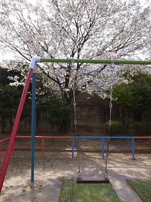 玉岡児童公園ものがたり前篇 桜が咲き、映画がまちにやって来た_c0069903_84564.jpg