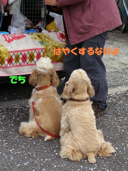 b0067012_0361811.jpg