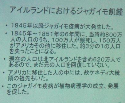 b0144125_20253728.jpg