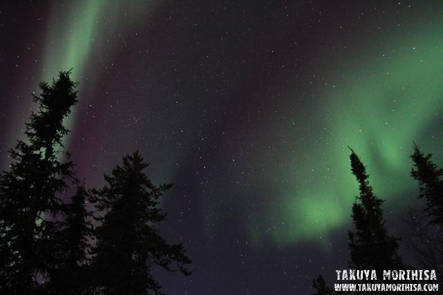 033 Aurora Village ~オーロラ撮影1夜目~_c0211532_003195.jpg