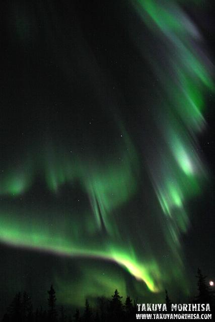 033 Aurora Village ~オーロラ撮影1夜目~_c0211532_0161682.jpg