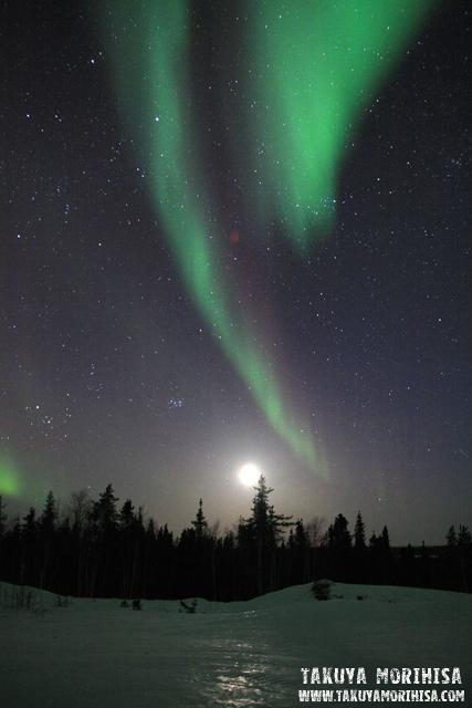 033 Aurora Village ~オーロラ撮影1夜目~_c0211532_021486.jpg