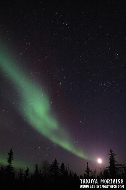 033 Aurora Village ~オーロラ撮影1夜目~_c0211532_031915.jpg