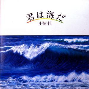 小椋佳 全シングル&アルバム 1_b0033699_184613100.jpg