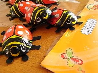てんとう虫のチョコレート_b0102217_17142541.jpg