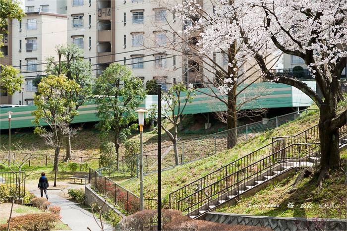 団地桜景 #04_e0117517_17445527.jpg