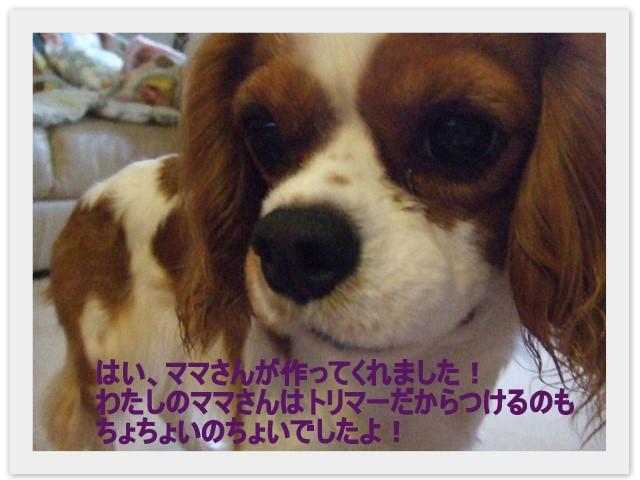 f0214121_21425344.jpg