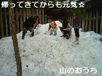 f0085327_9205829.jpg
