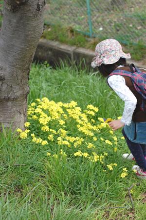 春のお散歩_e0195830_2552561.jpg
