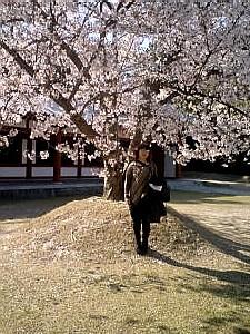 遷都1300年の奈良へ三宮からの直通阪神電車で行く #410_e0068533_9213615.jpg