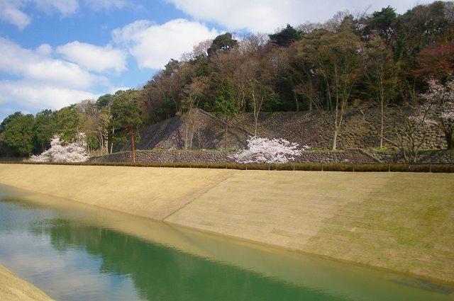 水を湛えたいもり堀(金沢)_d0043136_195926.jpg