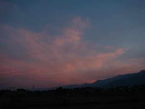 南の空が桜色_a0014840_2303650.jpg