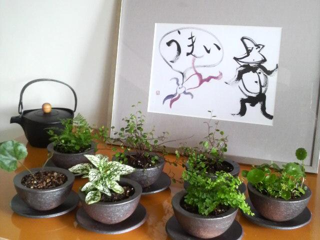 吉川寿一先生の書と信楽焼の植木鉢_c0069247_8463494.jpg