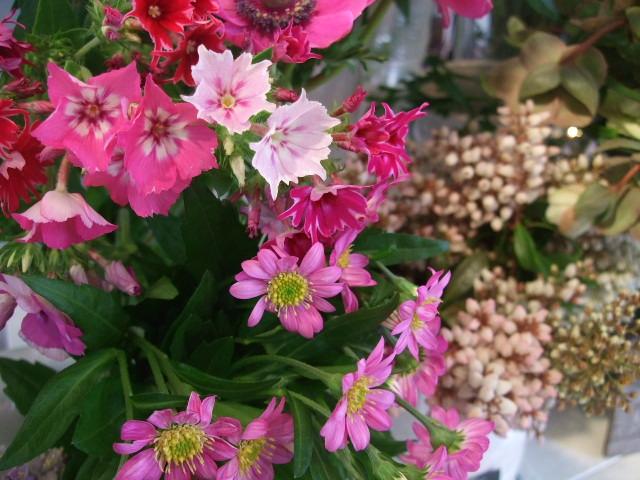 オークリーフ(愛しい花)_f0049672_14173497.jpg