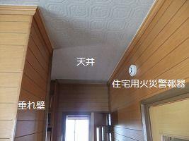b0003400_1915223.jpg