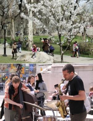 ニューヨークはすっかり春です_b0007805_2321544.jpg