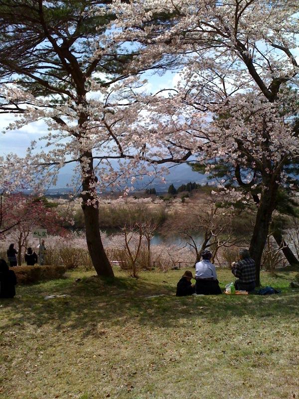 桜の園_c0063905_2044414.jpg