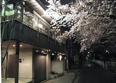 心に残る感動の花見会!_e0010418_1823426.jpg